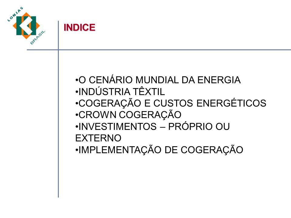 INDICE O CENÁRIO MUNDIAL DA ENERGIA. INDÚSTRIA TÊXTIL. COGERAÇÃO E CUSTOS ENERGÉTICOS. CROWN COGERAÇÃO.