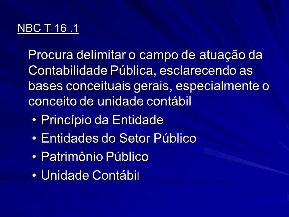 Entidades do Setor Público Patrimônio Público Unidade Contábil