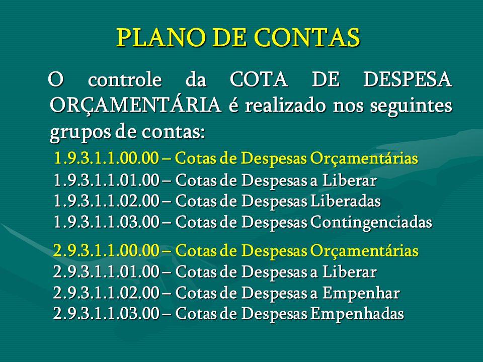 PLANO DE CONTAS O controle da COTA DE DESPESA ORÇAMENTÁRIA é realizado nos seguintes grupos de contas:
