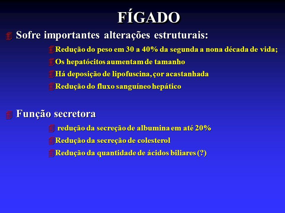 FÍGADO Sofre importantes alterações estruturais: Função secretora