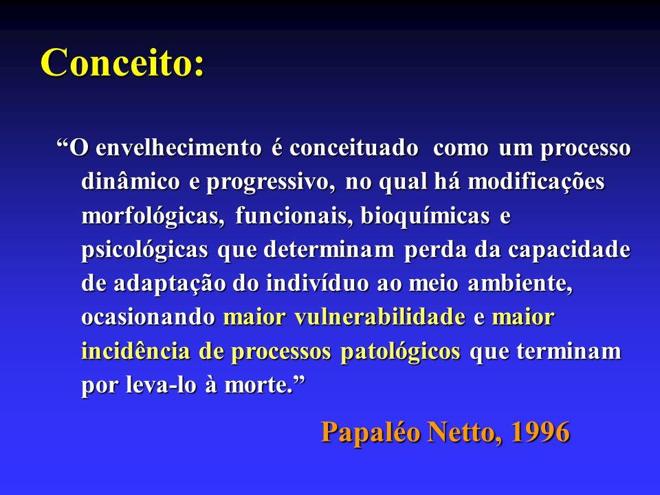 Conceito: Papaléo Netto, 1996