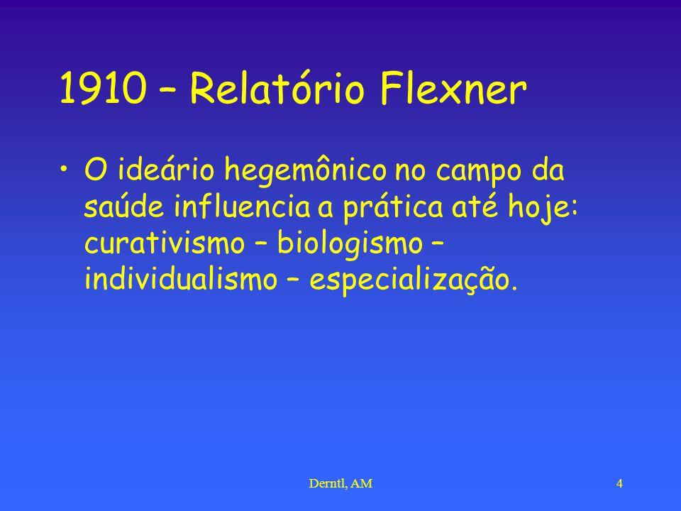 1910 – Relatório Flexner