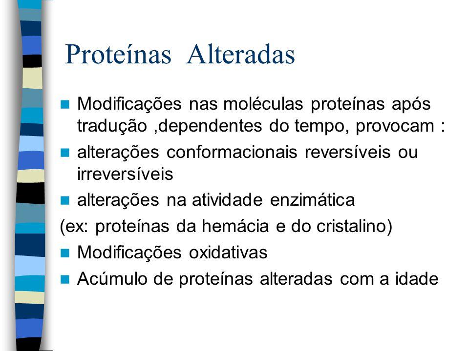 Proteínas Alteradas Modificações nas moléculas proteínas após tradução ,dependentes do tempo, provocam :