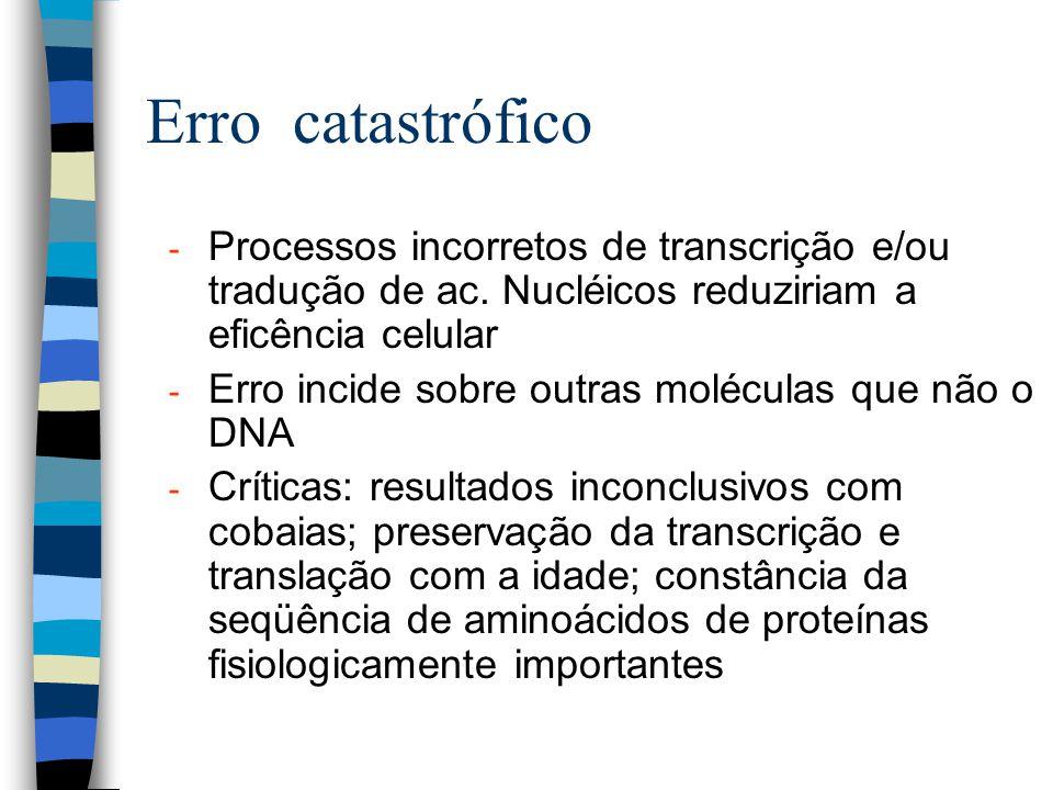 Erro catastrófico Processos incorretos de transcrição e/ou tradução de ac. Nucléicos reduziriam a eficência celular.
