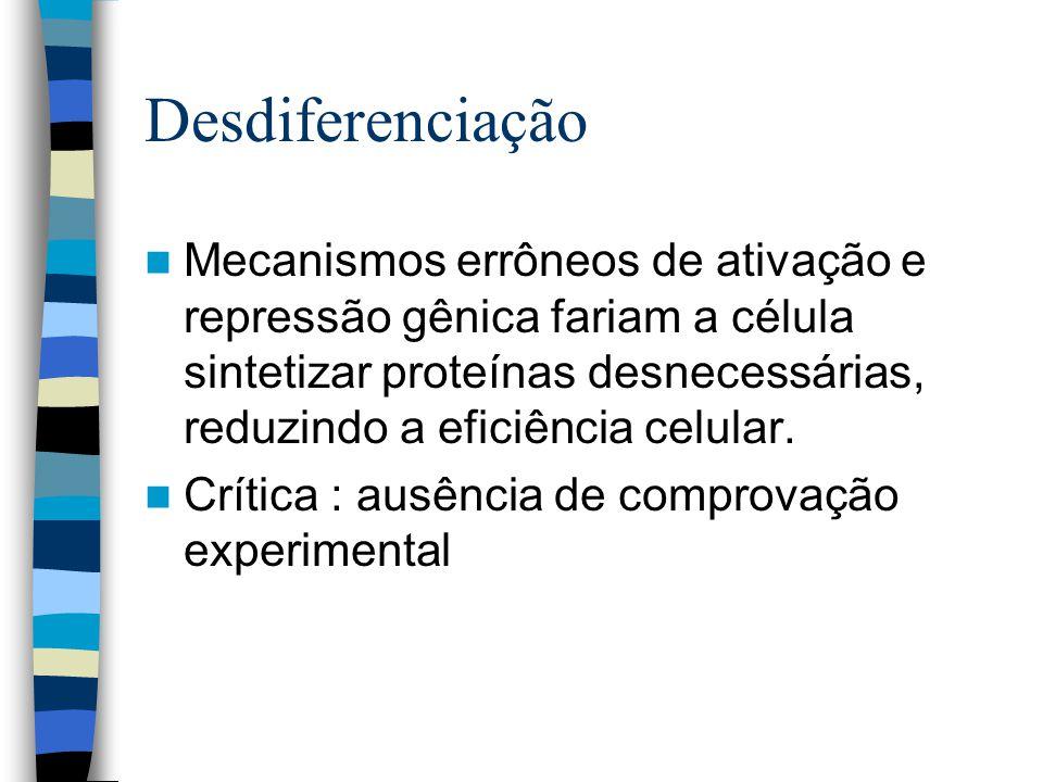 Desdiferenciação