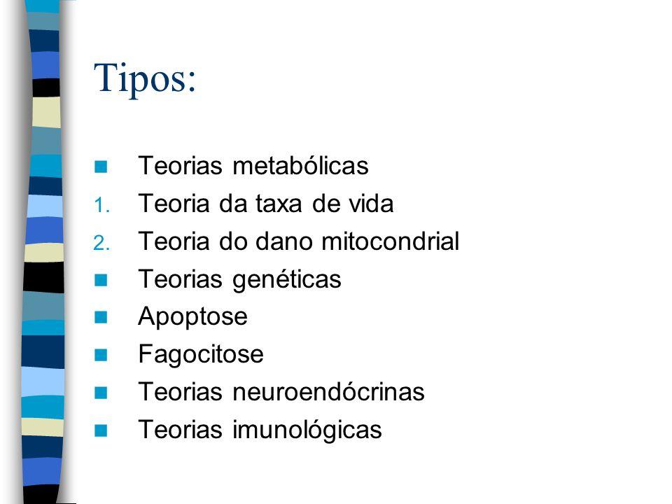 Tipos: Teorias metabólicas Teoria da taxa de vida