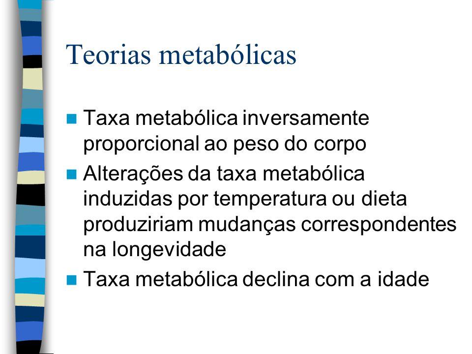Teorias metabólicas Taxa metabólica inversamente proporcional ao peso do corpo.