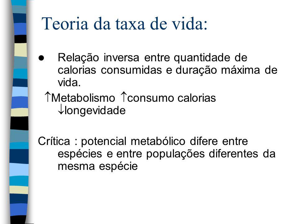 Teoria da taxa de vida: Relação inversa entre quantidade de calorias consumidas e duração máxima de vida.