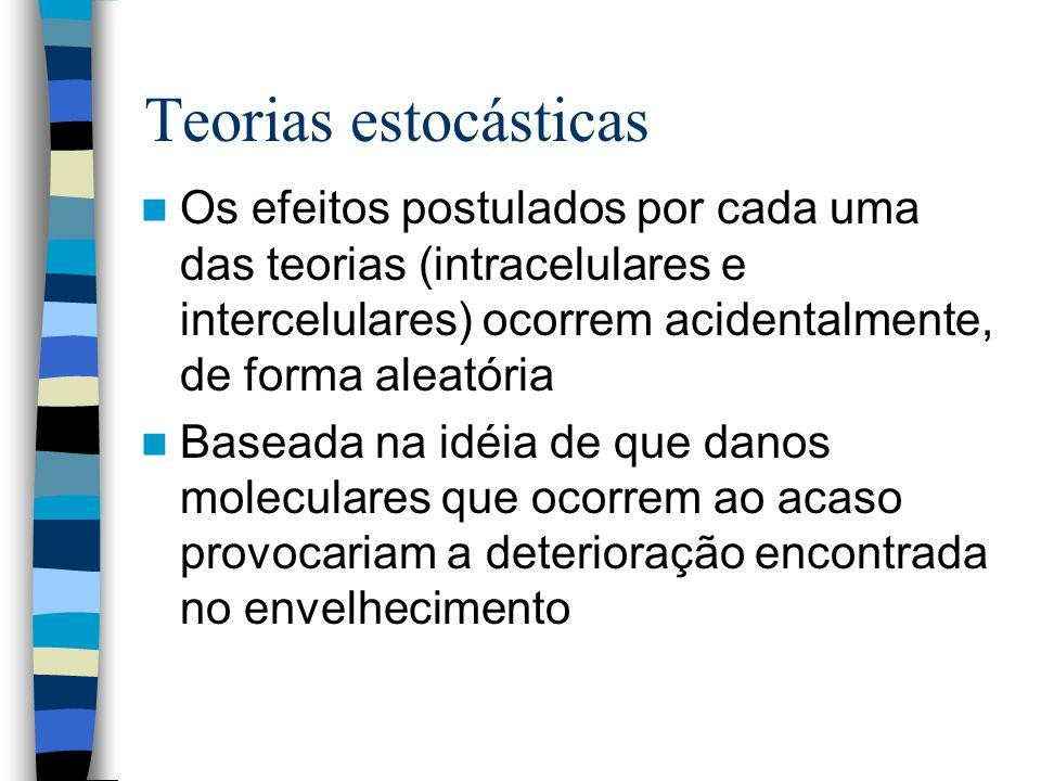 Teorias estocásticas Os efeitos postulados por cada uma das teorias (intracelulares e intercelulares) ocorrem acidentalmente, de forma aleatória.