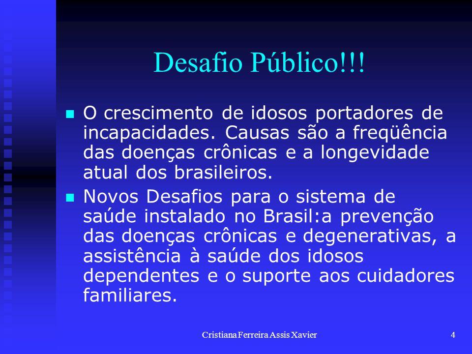 Cristiana Ferreira Assis Xavier