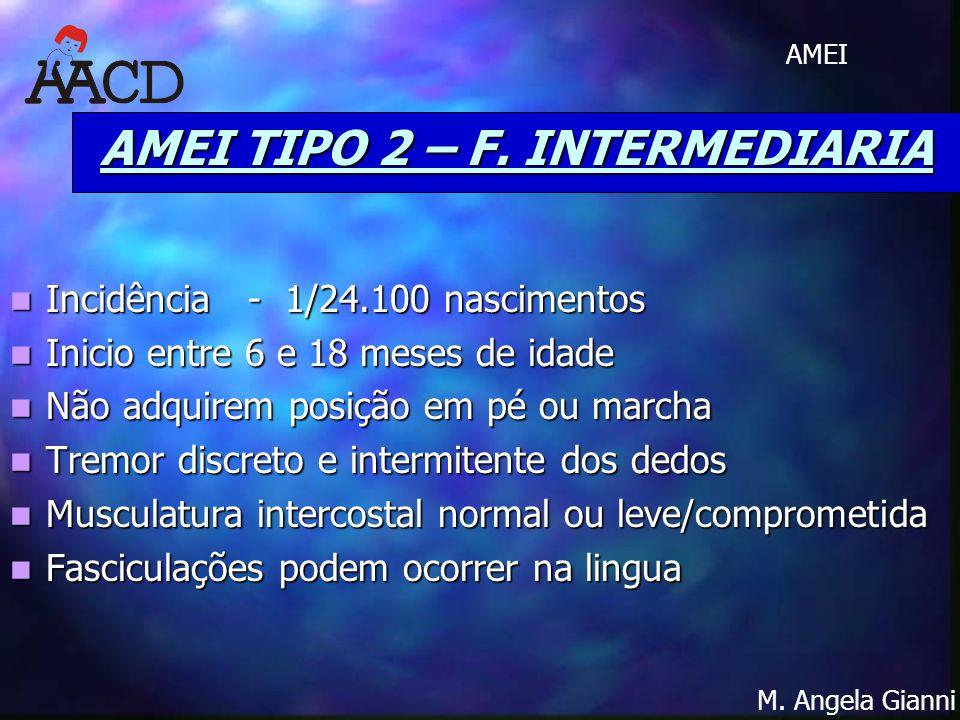 AMEI TIPO 2 – F. INTERMEDIARIA
