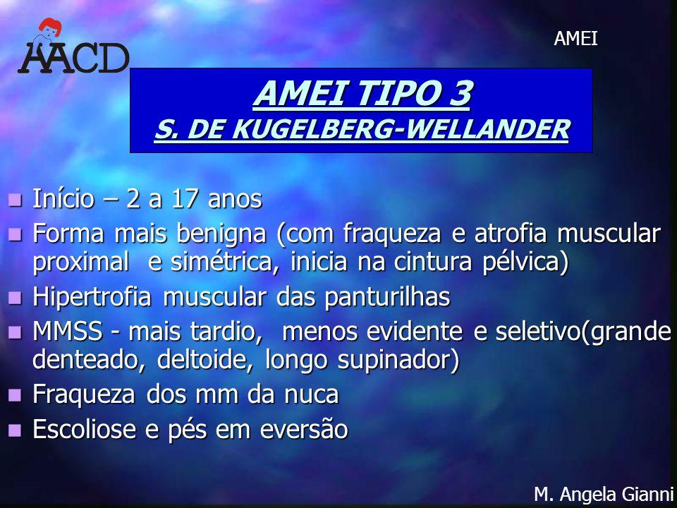 AMEI TIPO 3 S. DE KUGELBERG-WELLANDER