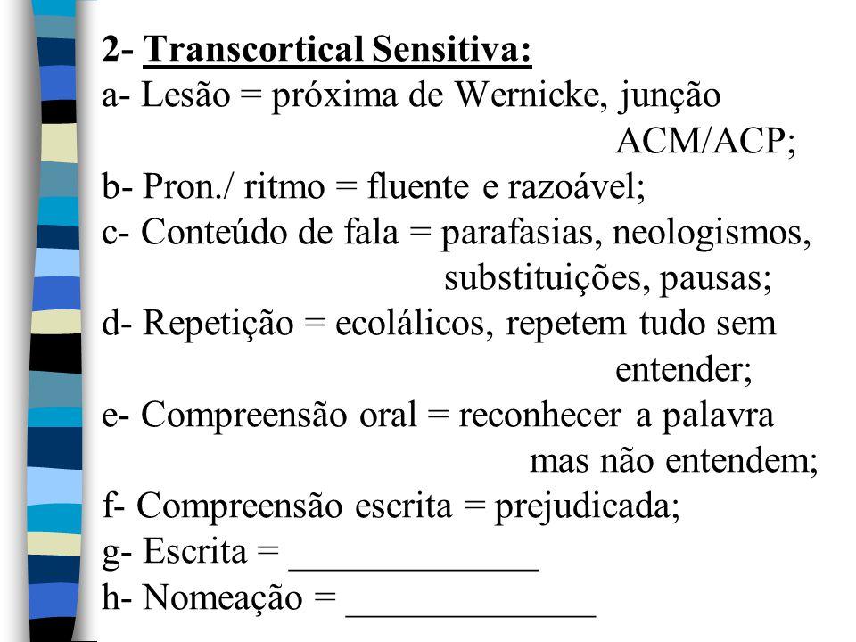 2- Transcortical Sensitiva: a- Lesão = próxima de Wernicke, junção