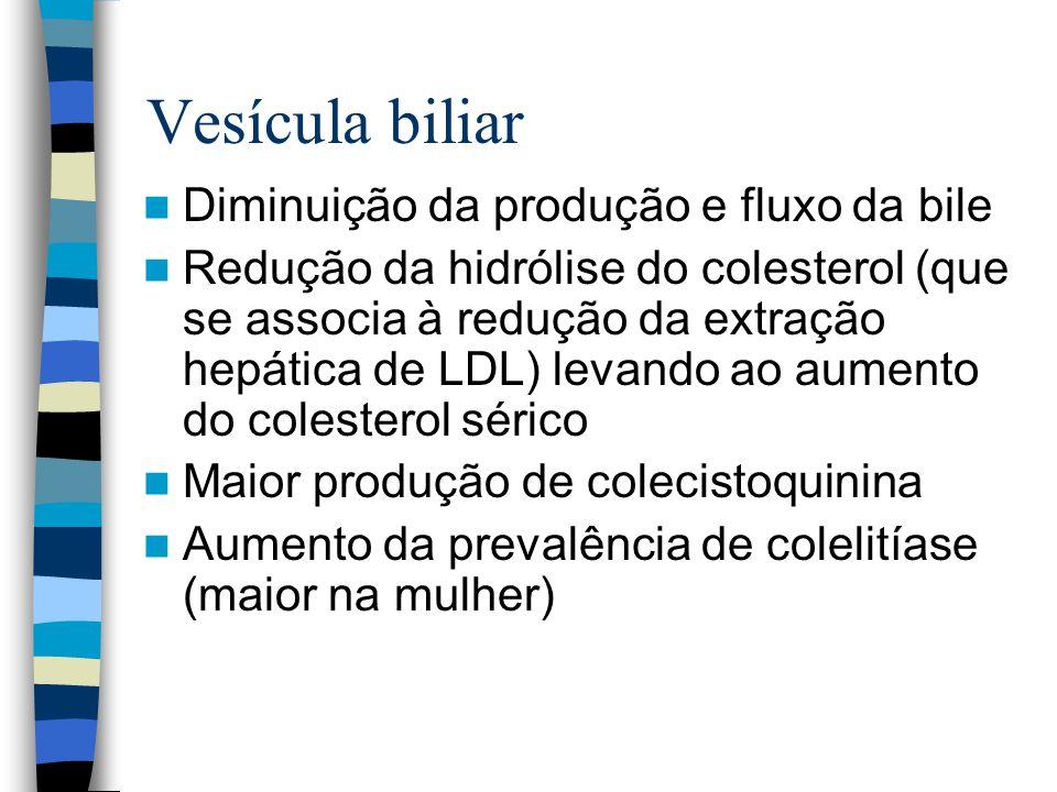 Vesícula biliar Diminuição da produção e fluxo da bile
