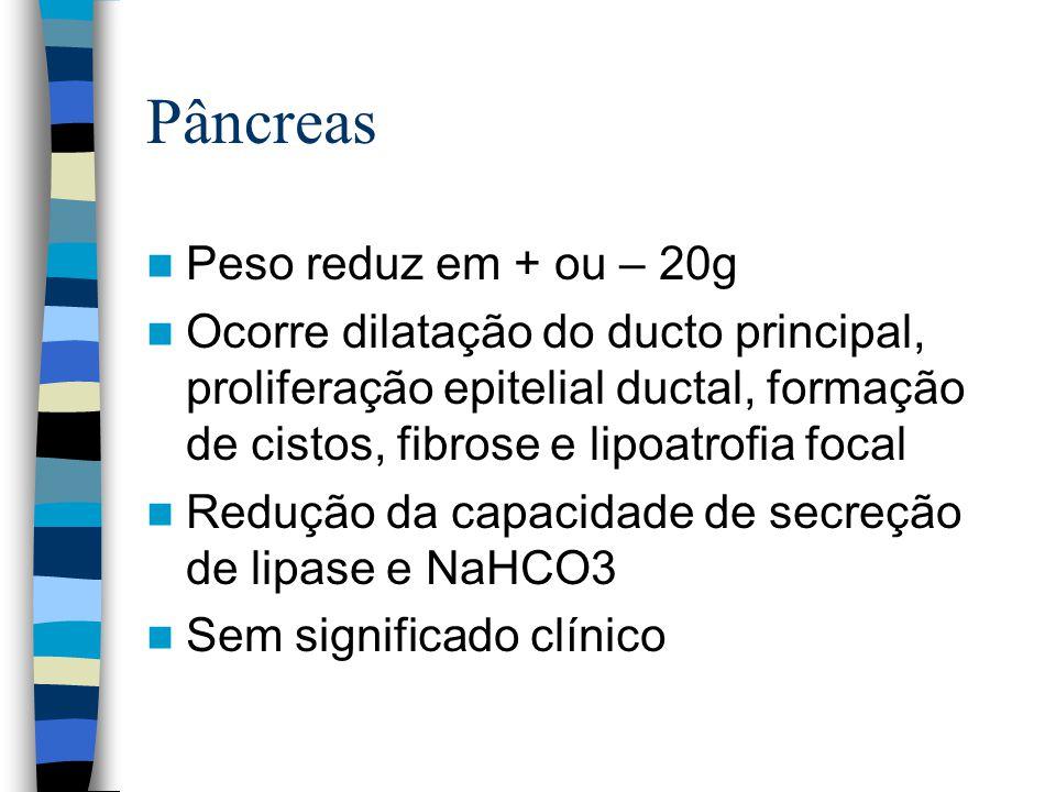 Pâncreas Peso reduz em + ou – 20g