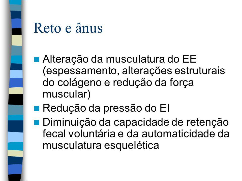 Reto e ânus Alteração da musculatura do EE (espessamento, alterações estruturais do colágeno e redução da força muscular)