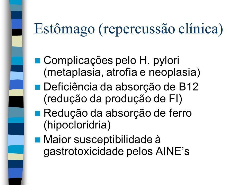 Estômago (repercussão clínica)
