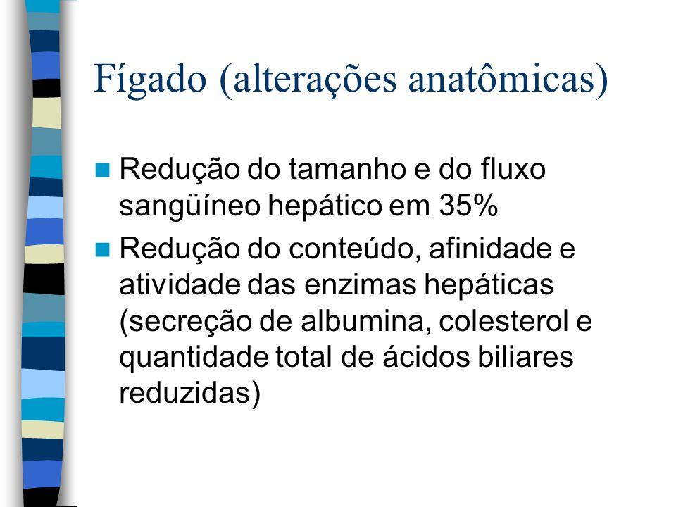 Fígado (alterações anatômicas)