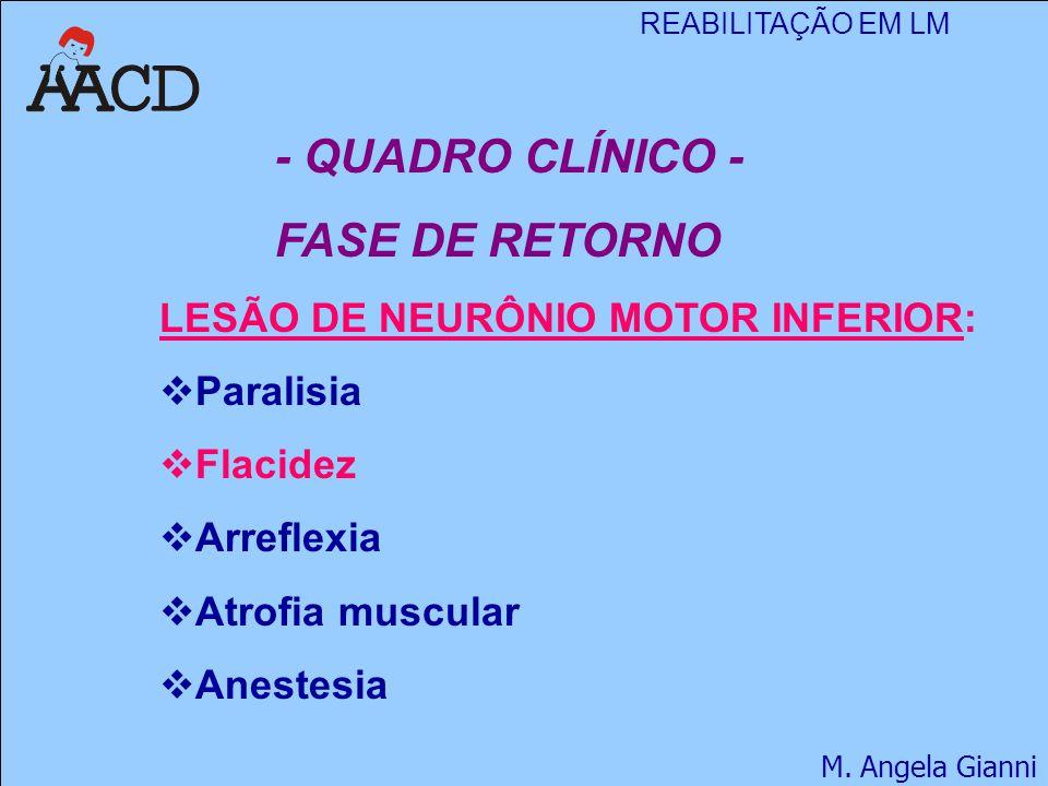 - QUADRO CLÍNICO - FASE DE RETORNO LESÃO DE NEURÔNIO MOTOR INFERIOR: