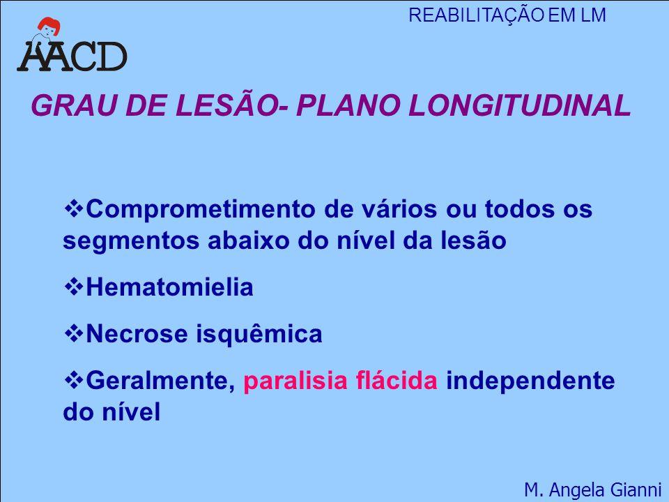 GRAU DE LESÃO- PLANO LONGITUDINAL