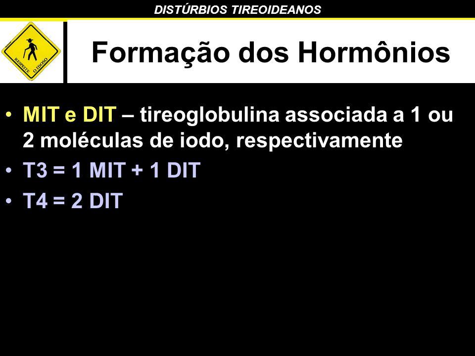 Formação dos Hormônios