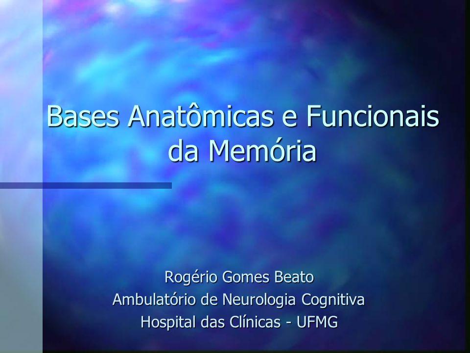 Bases Anatômicas e Funcionais da Memória