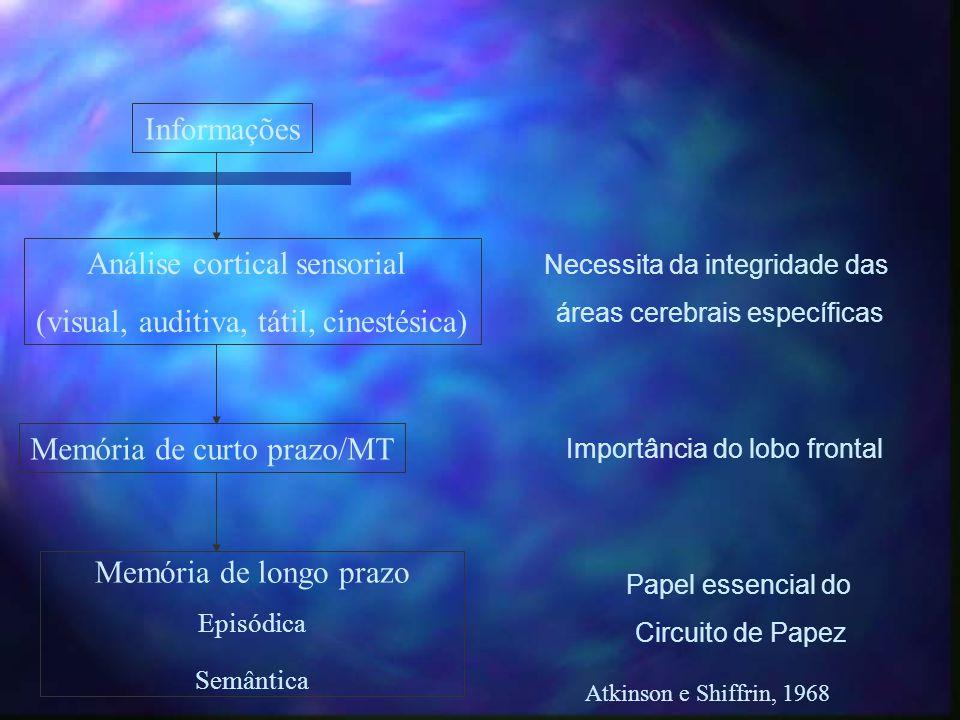 Análise cortical sensorial (visual, auditiva, tátil, cinestésica)
