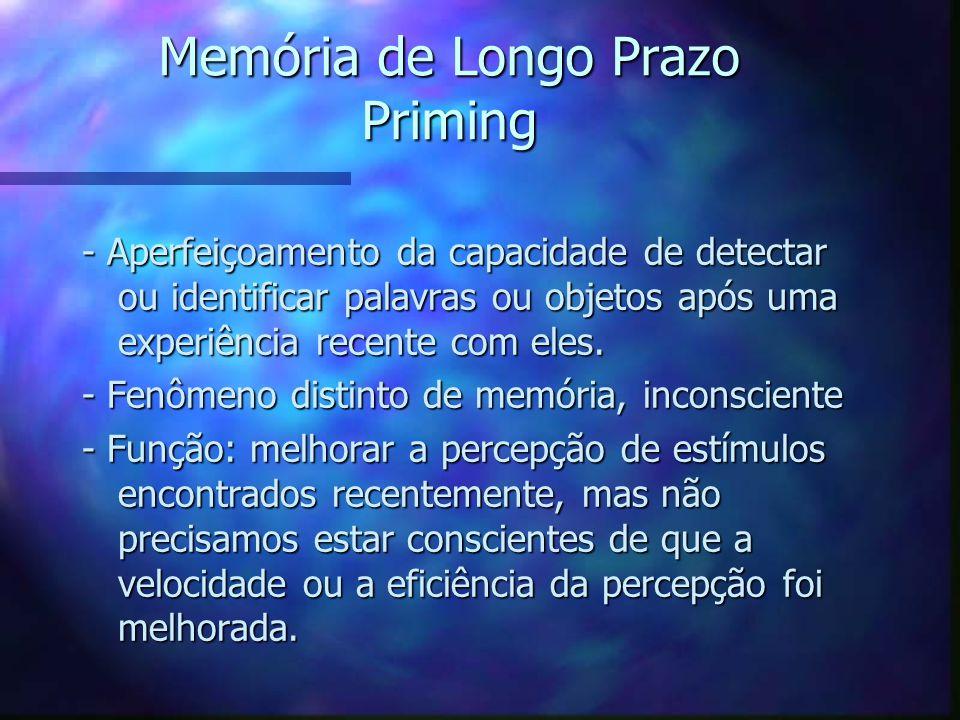 Memória de Longo Prazo Priming