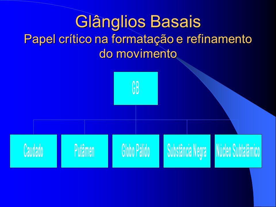 Glânglios Basais Papel crítico na formatação e refinamento do movimento