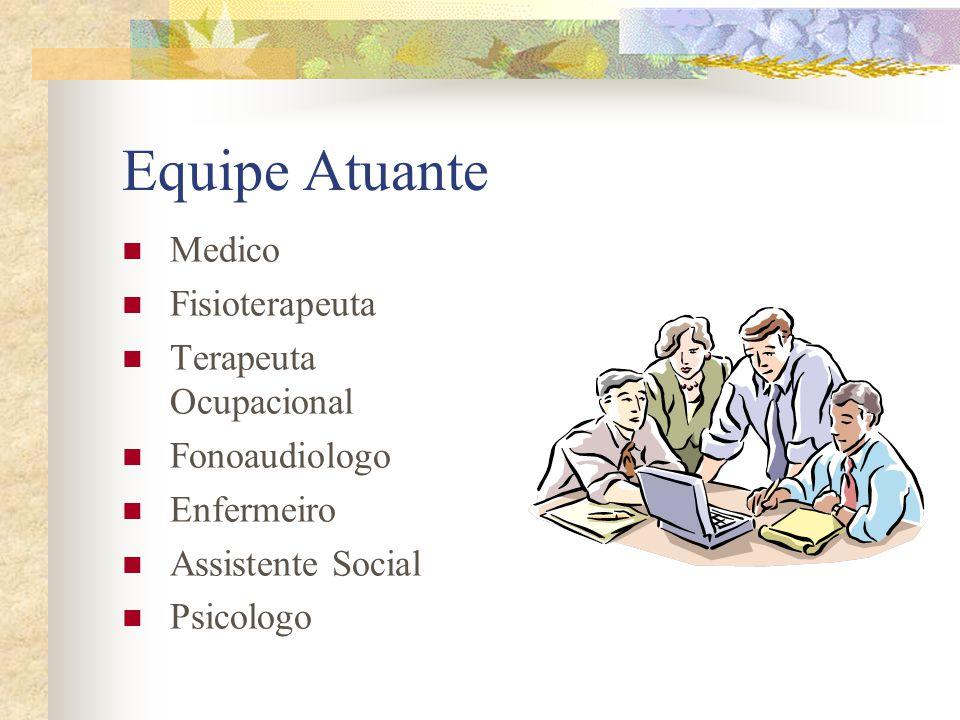 Equipe Atuante Medico Fisioterapeuta Terapeuta Ocupacional