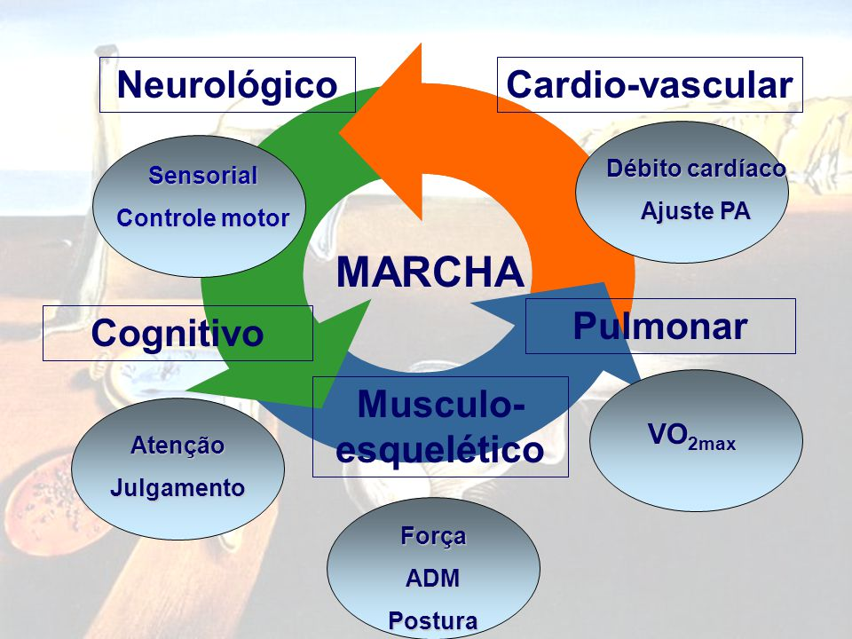 MARCHA Neurológico Cardio-vascular Pulmonar Cognitivo