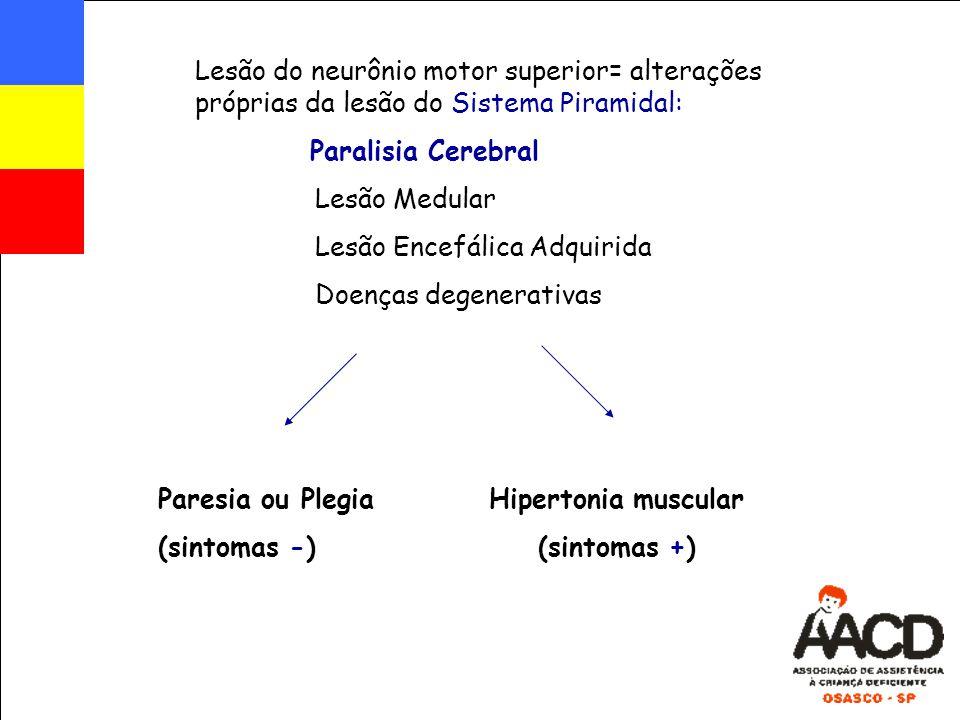 Lesão do neurônio motor superior= alterações próprias da lesão do Sistema Piramidal: