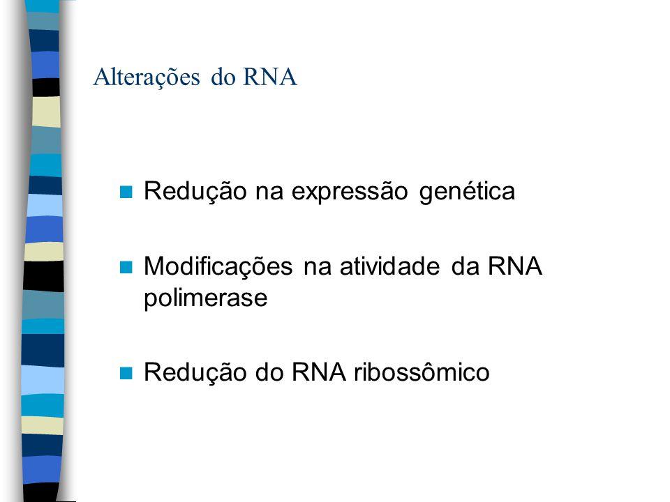 Alterações do RNA Redução na expressão genética. Modificações na atividade da RNA polimerase.