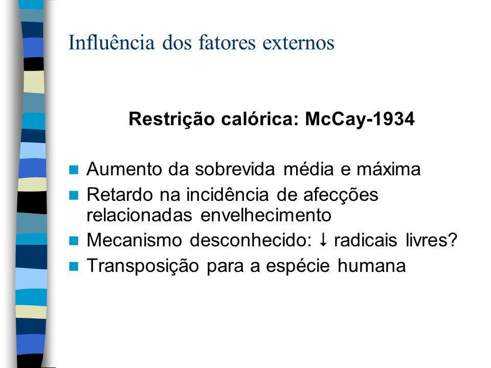 Influência dos fatores externos