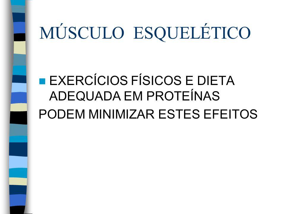 MÚSCULO ESQUELÉTICO EXERCÍCIOS FÍSICOS E DIETA ADEQUADA EM PROTEÍNAS