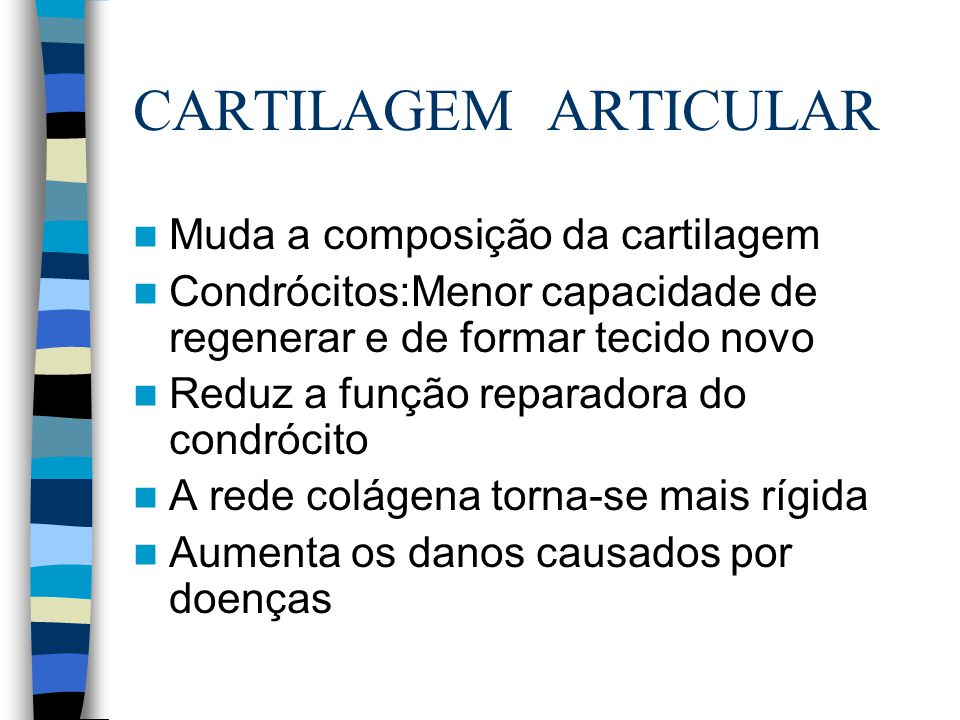 CARTILAGEM ARTICULAR Muda a composição da cartilagem