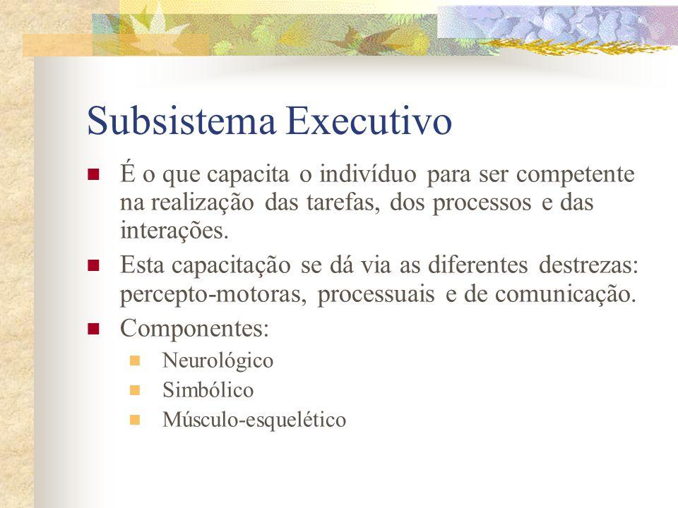 Subsistema Executivo É o que capacita o indivíduo para ser competente na realização das tarefas, dos processos e das interações.