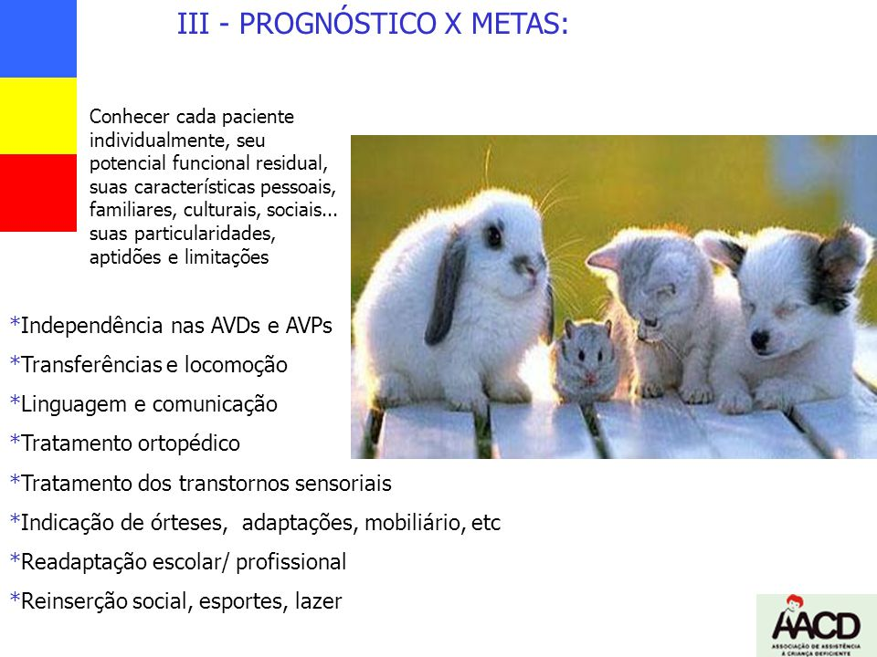III - PROGNÓSTICO X METAS: