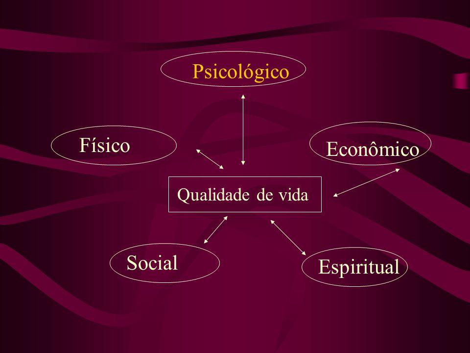 Psicológico Físico Econômico Qualidade de vida Social Espiritual