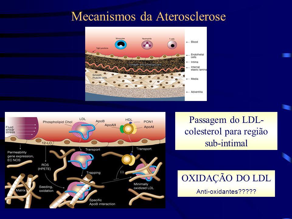 Mecanismos da Aterosclerose