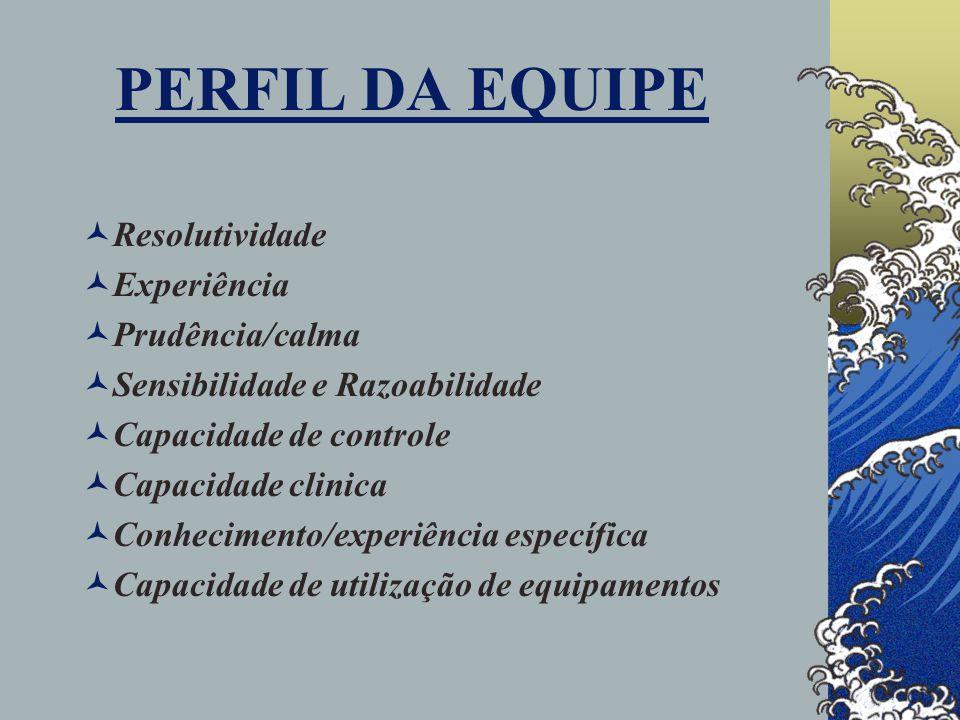 PERFIL DA EQUIPE Resolutividade Experiência Prudência/calma