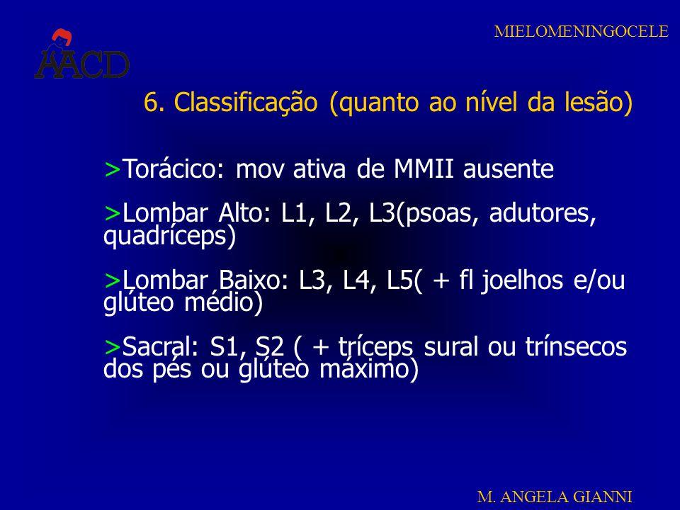 6. Classificação (quanto ao nível da lesão)