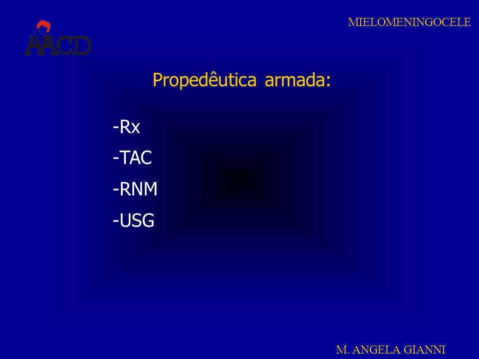 Propedêutica armada: Rx TAC RNM USG