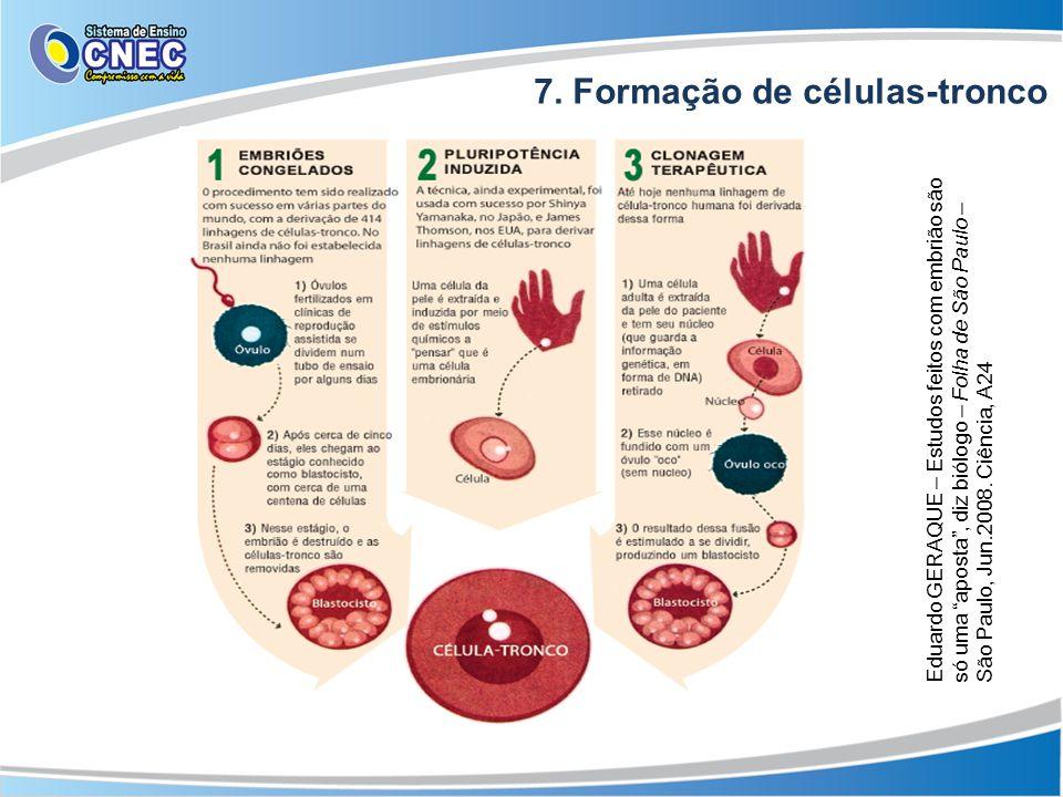 7. Formação de células-tronco