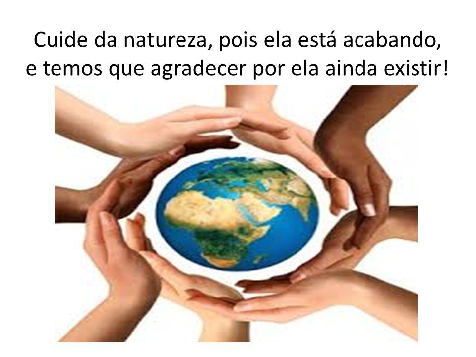 Cuide da natureza, pois ela está acabando, e temos que agradecer por ela ainda existir!