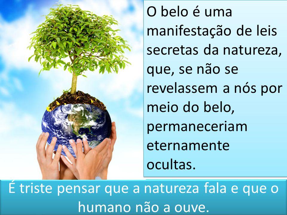 É triste pensar que a natureza fala e que o humano não a ouve.