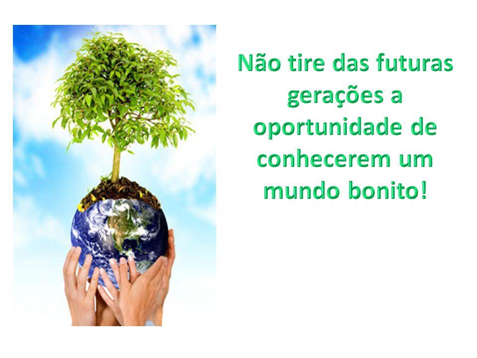 Não tire das futuras gerações a oportunidade de conhecerem um mundo bonito!