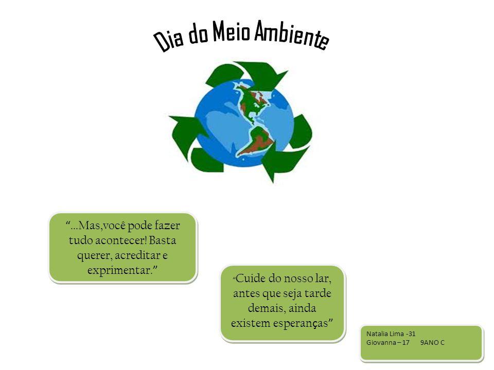 Dia do Meio Ambiente ...Mas,você pode fazer tudo acontecer! Basta querer, acreditar e exprimentar.