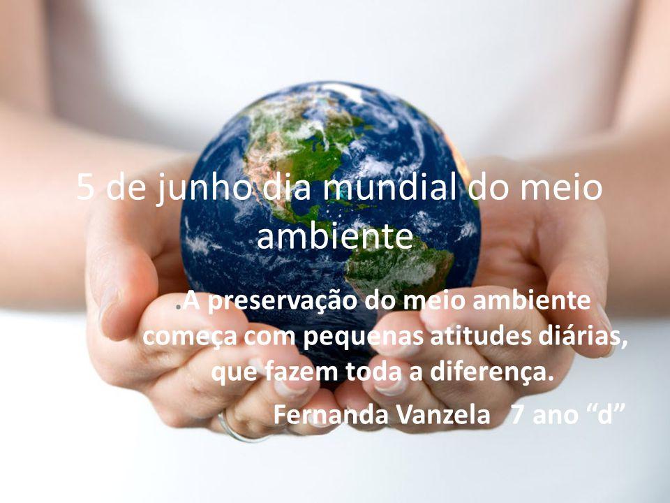 5 de junho dia mundial do meio ambiente