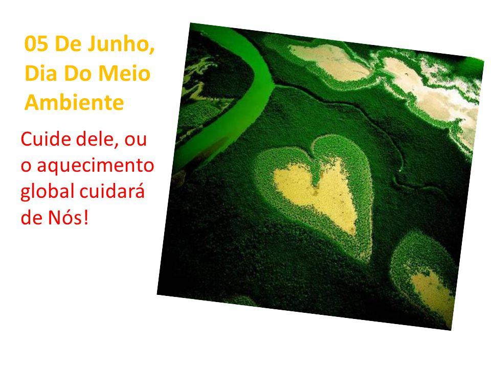 05 De Junho, Dia Do Meio Ambiente